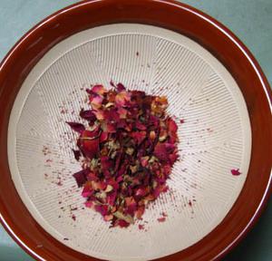 rose_pink-1.JPG